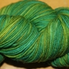 Crazyfoot superwash wool, nylon, fingering weight, mountain colors
